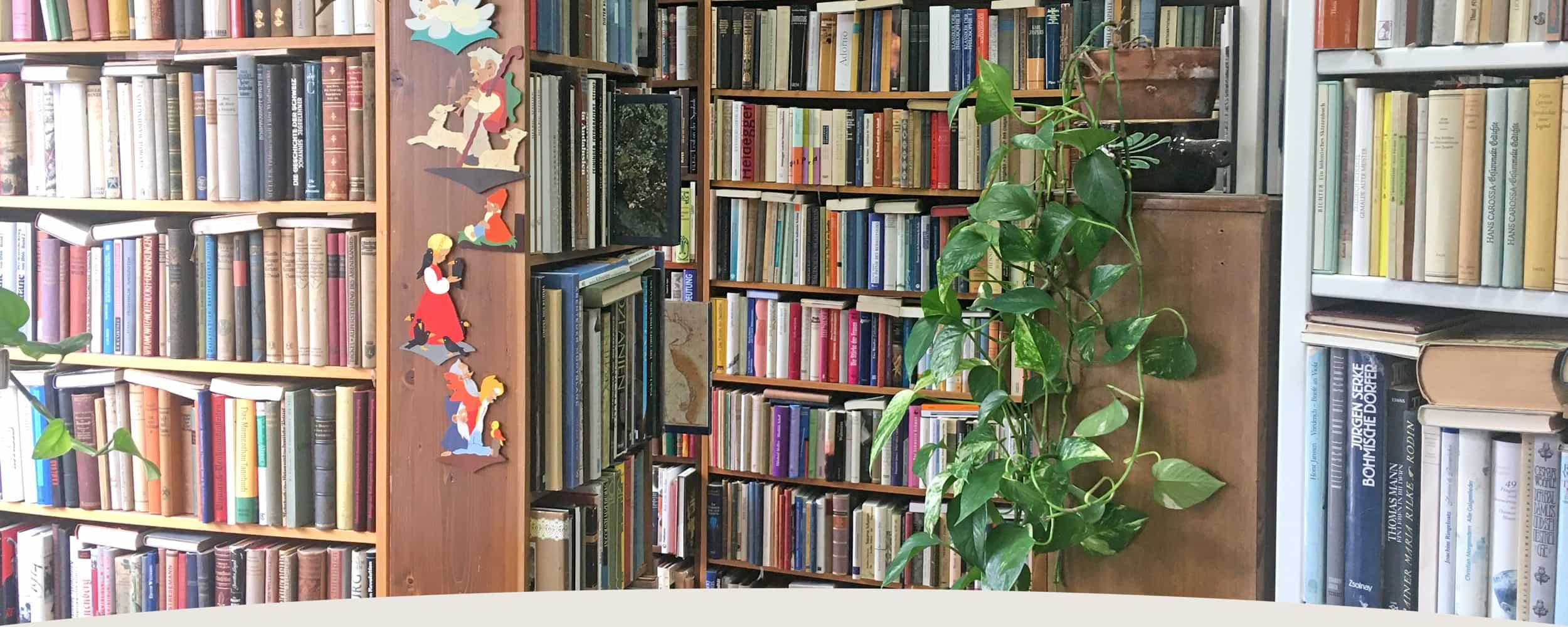 Bücherregale im Laden des Antiquariat an der Linie 3 in Darmstadt